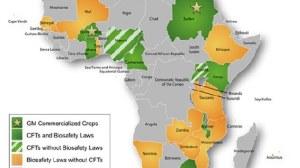 GMO GHANA