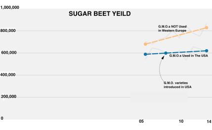 sugar_beets-600