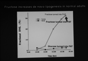 Fractose vs. Glucose