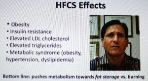 HFCS- Effects