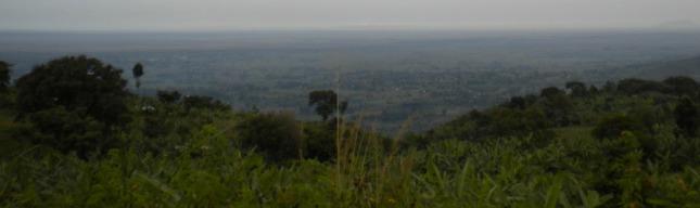 Bulambuli Land Scape